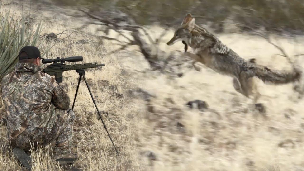 Using-Hunting-Tips